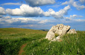 Picturesque landscape with stone — Stock Photo