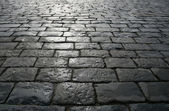 Paving blocks after rain — Foto Stock
