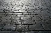 雨后的铺路砖 — 图库照片