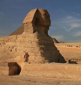 Sphinx en grote pyramide van khufu — Stockfoto