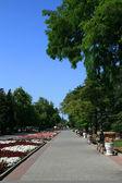 Promenade — Stock Photo