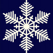 Snowflake — Stock Vector #1462943