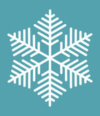 Snowflake — Stock Vector