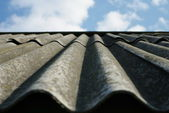 The old slate roof — Stock Photo