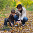 Stock Photo: Mother and son collect fallen leaves