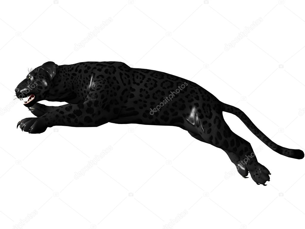 Jumping black panther — Stock Photo © Wampa76 #1093747