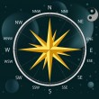 Compass a wind rose — Stock Vector