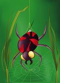Spinne — Stockvektor