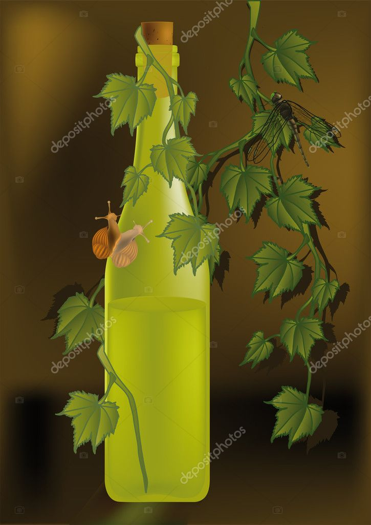 Bottle with white wine a snail and a grapevine — Stock Vector #1584092