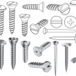 Screws and nails - Stock Vector