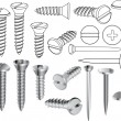 Stock Vector: Screws and nails