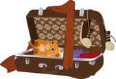 Suitcase with things — Stock Vector