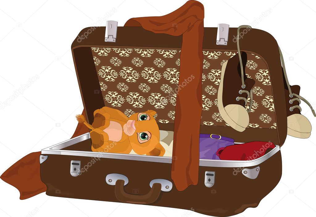 Suitcase with things  fashion gathering gift — Stock Vector #2285434