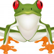 Royalty-Free Stock Vector Image: Frog