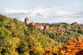 Castle Turaida — Stock Photo