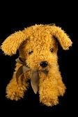 Soft toy dog — Stock Photo