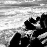 Stones on beach — Stock Photo #1075953