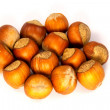 Hazelnuts in shell — Foto Stock