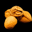 Walnuts in shell — Stock Photo #2540864
