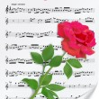 Red rose on notesheet — Stock Vector