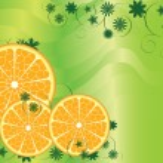 Abstract Fruit Orange Background — Stock Vector