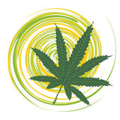 Cannabis leaf — Stock Vector