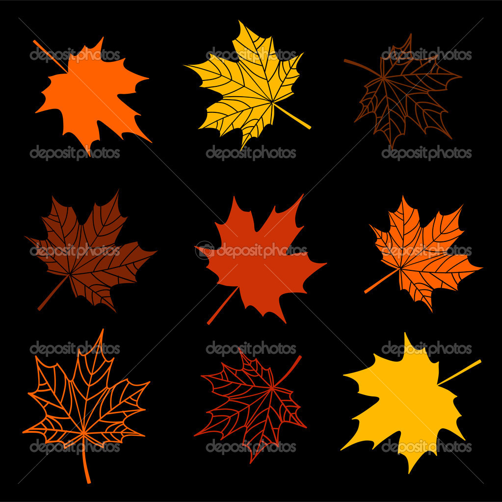 Leaves of maple tree collection — Stock Vector #1948489