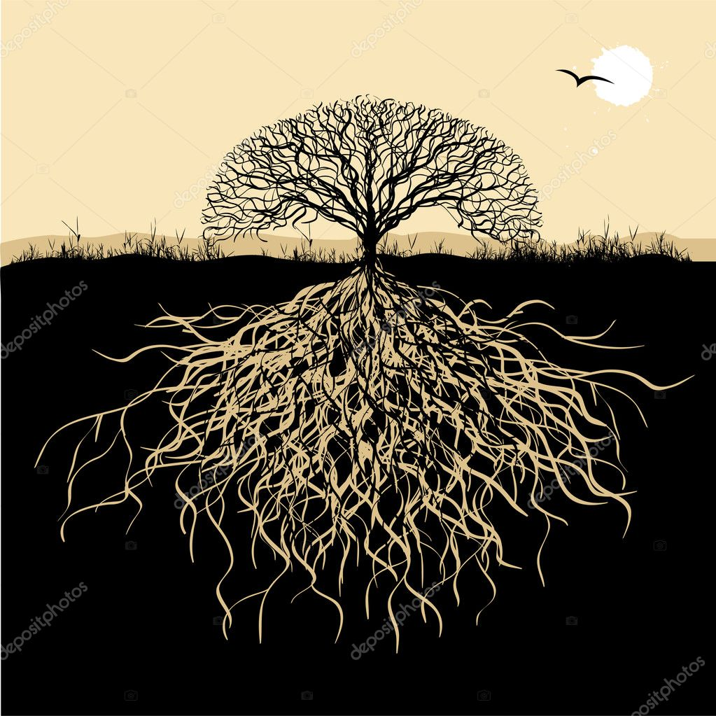 Tree silhouette with roots — Stock Vector #1950502