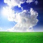 Green field beautiful — Stock Photo