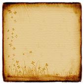 Vintage vieux herbe grunge de papier — Photo