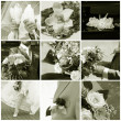Wedding collage — Stock Photo #2582510