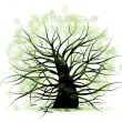 Royalty-Free Stock Vector Image: Big old tree, green leaf