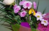 несколько цветов — Стоковое фото