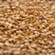 Buckwheat groats — Stock Photo #1381380