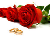Wedding rings and red roses — Stock Photo