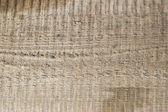 Holzoberfläche 2 — Stockfoto
