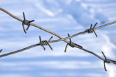 Old barbed wire — Stock Photo