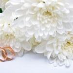 Wedding rings and white chrysanthemum 2 — Stock Photo