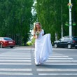 Stock Photo: Beautiful bride passes road