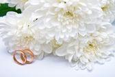 Trauringe und weiße chrysantheme 2 — Stockfoto