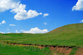 Summer landscape with hills — Stock Photo