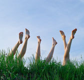 Feet of girls laying in a grass — Stock fotografie