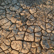 The dried up cracked earth — Stock Photo #2018841