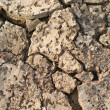 Dried up cracked earth — Stock Photo