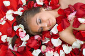 Sleeping girl in rose petal — Stock Photo
