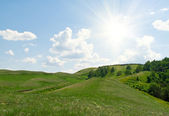 Trees on hills of the Ural mountains — Stock Photo