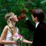 Bride and groom against rowan tree — Stock Photo #2128897