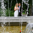 Bride and groom in summer park 2 — Stock Photo #2128917