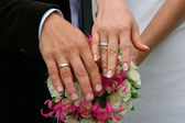 Hands of a newly-married couple — Stock Photo