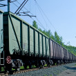 Rusty brown and green freight cars — Stock Photo